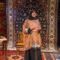 Premiere Stages to Present Screenings of Rohina Malik's UNVEILED Photo