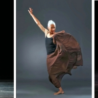 THE 2020 AMERICAN DANCE GUILD PERFORMANCE FESTIVAL Celebrates 10 Years Over 10 Weeks Photo