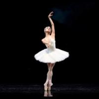 Helgi Tomasson's SWAN LAKE Closes SF Ballet's 2021 Digital Season, May 20- June 9 Photo