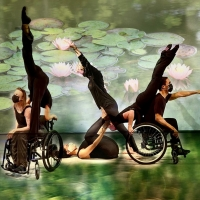 Karen Peterson and Dancers to Return to Pinecrest Gardens Photo