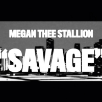 Megan Thee Stallion Releases 3D Animated Video for 'Savage'