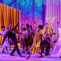 BWW Interview: Tinuke Craig Chats THE COLOR PURPLE - AT HOME From Leicester Curve Onl Photo
