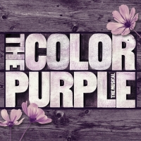 BWW Review: THE COLOR PURPLE in Jackson - Too Beautiful for Words Photo