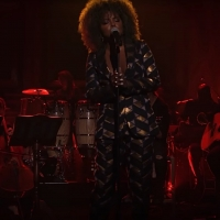 VIDEO: Adrienne Warren Performs 'Private Dancer' from TINA on THE TONIGHT SHOW Photo