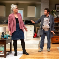 BWW Review: TELL ME I'M NOT CRAZY at Williamstown Theatre Festival Is Packed With Lau Photo