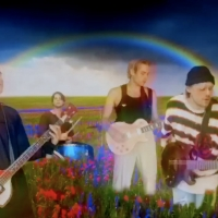 5 Seconds Of Summer Share Homemade 'Wildflower' Music Video Photo