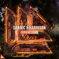 Dannic Collaborates with Harrison for 'Burn Me Down' Photo