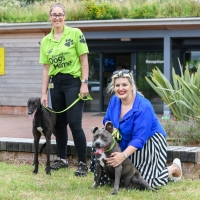 Jodie Prenger Visits Birmingham Dog's Home