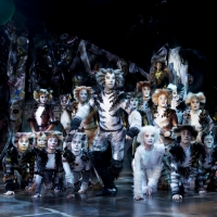 BWW Review: CATS at the Sands Theatre, what a fantastic mewsicle! Photo