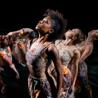 BWW Review: Cityscapes & Digital Engagement with Elisa Monte Dance Photo