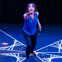 BWW Review: A woman uses science to comprehend America in THE CHAOS THEORY OF NOW at  Photo