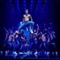 BWW Review: MAGIC MIKE LIVE at The Arcadia, Birrarung Marr Photo
