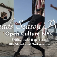 Amanda Selwyn Dance Theatre Announces in Person Performances in June Photo