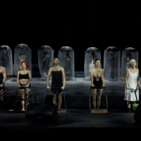 VIDEO: Theatre Basel Produktionstrailer Alte Tiere Hochgestapelt Photo