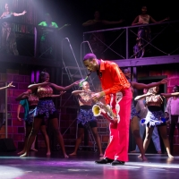 Samantha Williams To Host Screening Of First Amateur Production Of FELA! Photo