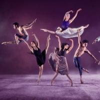 BWW Review: EMERGING DANCER 2020, English National Ballet HQ Photo
