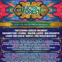 Flume, Major Lazer & More Announced for Electric Forest's 10th Anniversary Photo