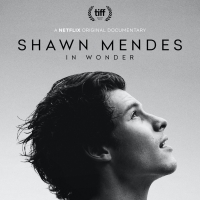VIDEO: Watch the Trailer for Shawn Mendes' IN WONDER Documentary