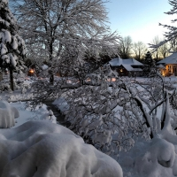 BWW Blog: Tackling Virtual, Remote Finals - Frosty's World #5 Photo