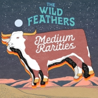 LISTEN: The Wild Feathers Release New Single 'Fire' Photo