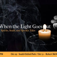 Hedgepig Ensemble Theatre Will Return To Live Performance With WHEN THE LIGHT GOES OU Photo