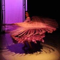 Roxey Ballet Presents A Modern Twist On CARMEN Photo