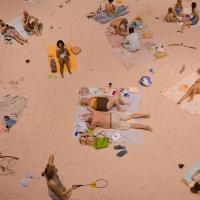 "BAM Seeks Local ""Beachgoers"" (and At Least One Dog) for SUN & SEA Photo"