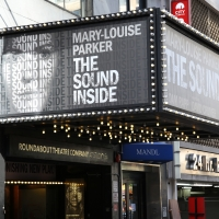 BWW TV: Watch Broadway Walk the Red Carpet on Opening Night of THE SOUND INSIDE Photo
