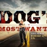 New Unscripted Series DOG'S MOST WANTED to Premiere on WGN America