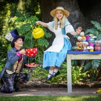 Join Alice As She Explores Wonderful Wonderland At The Athenaeum Theatre These Summer Photo