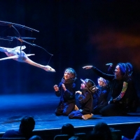 Scottsdale Center For The Performing Arts Announces November 2019 Events