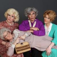 Hell In A Handbag Productions Announces 20th Anniversary Season Photo