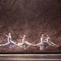 BWW Review: THE NUTCRACKER, Royal Albert Hall Photo