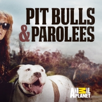 PIT BULLS & PAROLEES Returns to Animal Planet This October Photo