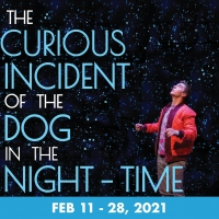 Shea's Performing Arts Center Announces New Dates For THE CURIOUS INCIDENT OF THE DOG Photo
