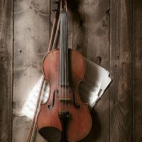 Quartet 131 To Make New York Debut At Kaufman Center Photo