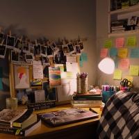 BWW Blog: Surviving Zoom School Photo