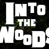Passion Projects Theatre Company Presents INTO THE WOODS Photo