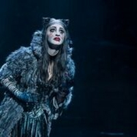 BWW Review: CATS at Citizens Bank Opera House Photo
