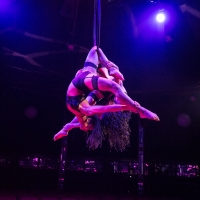 BWW Review: LA CLIQUE, Leicester Square Spiegeltent Photo