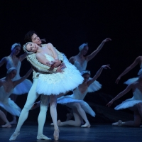BWW Review: ENGLISH NATIONAL BALLET - SWAN LAKE, Liverpool Empire Photo