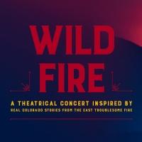 DCPA Theatre Company Announces Full Cast and Creative Team for World Premiere of WILD Photo