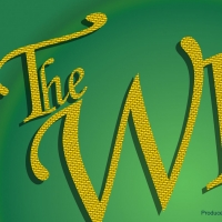 Star Center Theatre Cancels Performances of THE WIZ After Cast Member is Exposed to COVID- Photo