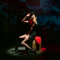 BWW Review: RENDEZVOUS WITH MARLENE, St. George's, Bristol