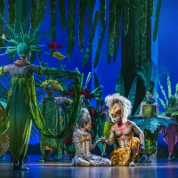 BWW Review: THE LION KING, Edinburgh Playhouse Photo