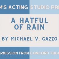 BWW Review: HATFUL OF RAIN at Barnum's Acting Studio Photo
