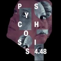 BWW Finland Review: SARAH KANE'S 4.48 PSYCHOSIS AT KOKO THEATRE Photo