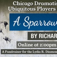 Chicago Dramatists Announces Online Reading Of A SPARROW FALLS By Richard Gustin Photo