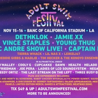 ADULT SWIM FESTIVAL Announces More Acts and Fan Experiences