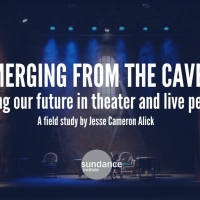 Sundance Institute Releases Independent Theater Study on Needs of Artists Photo